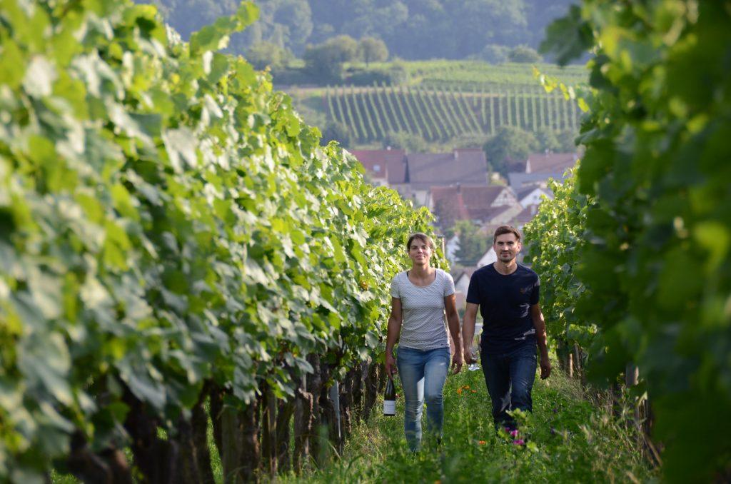 Stefanie und Fabian Lassak im Weinberg. Das Weingut Lassak im Interview.